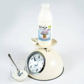 bio-sadni-jogurt-marelica1