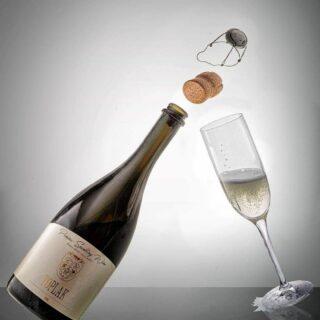Bogato vinsko razvajanje brbončic za 4 osebe