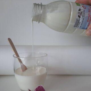 navadni-jogurt