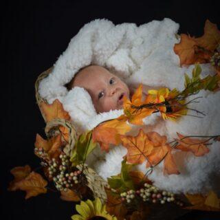 Darilni bon - fotografiranje dojenčkov