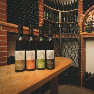 degustacija-vin-kaloh
