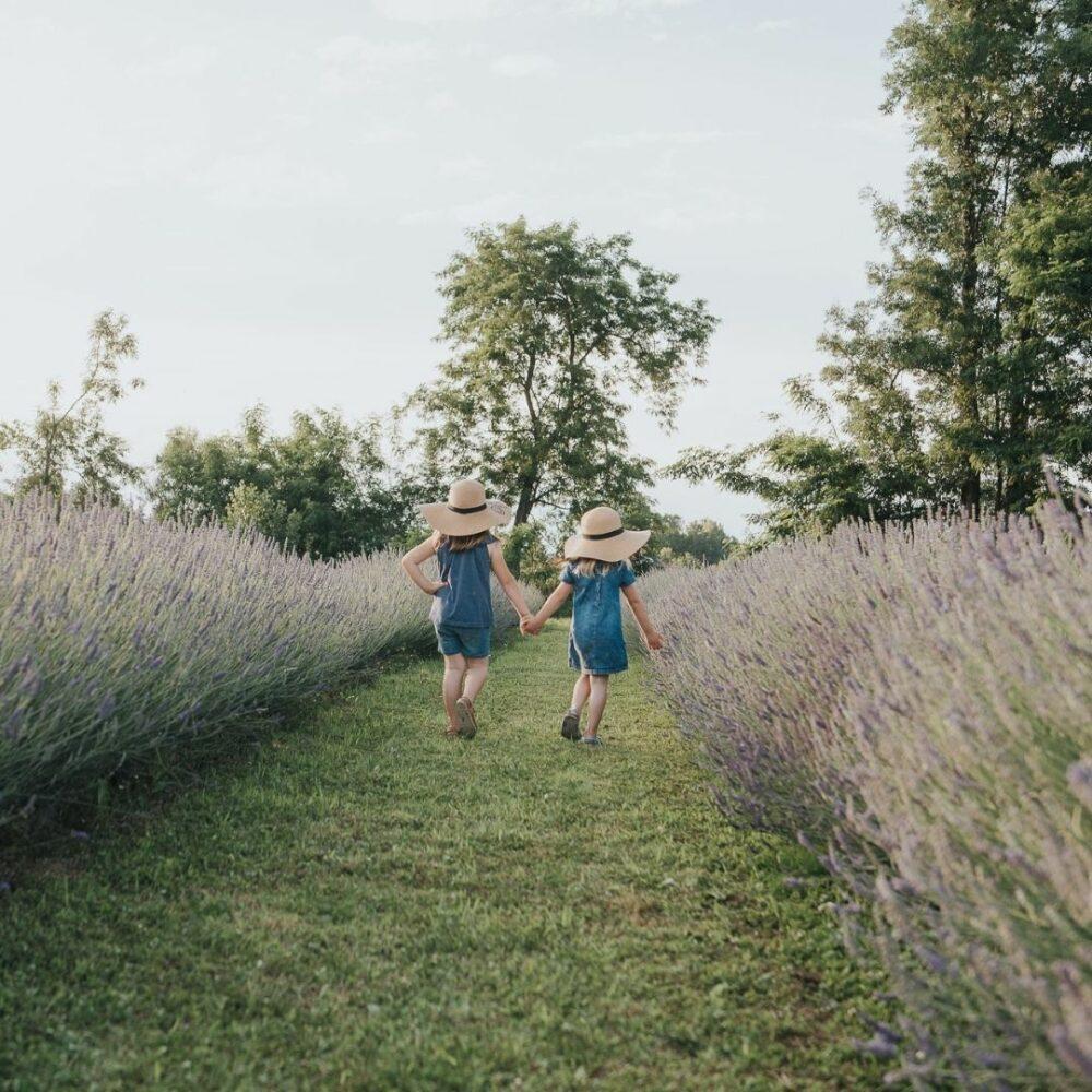 Družinsko fotografiranje v naravi (okolica Beltinc) Darila Slovenije