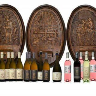 Pohod od kleti do kleti z nepozabno vinsko izkušnjo ( za 6 oseb) - Juršinci